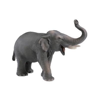 olifant-icoon