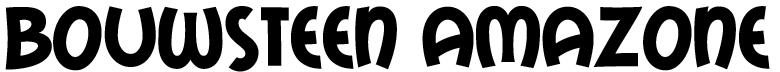 bouwsteen-Amazone-tekst