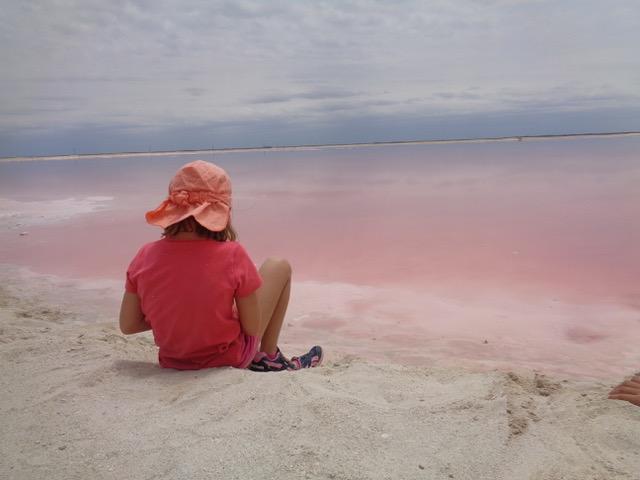Charlotte pink lagoon